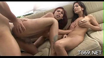 horny transsexual enjoys firm knob of.